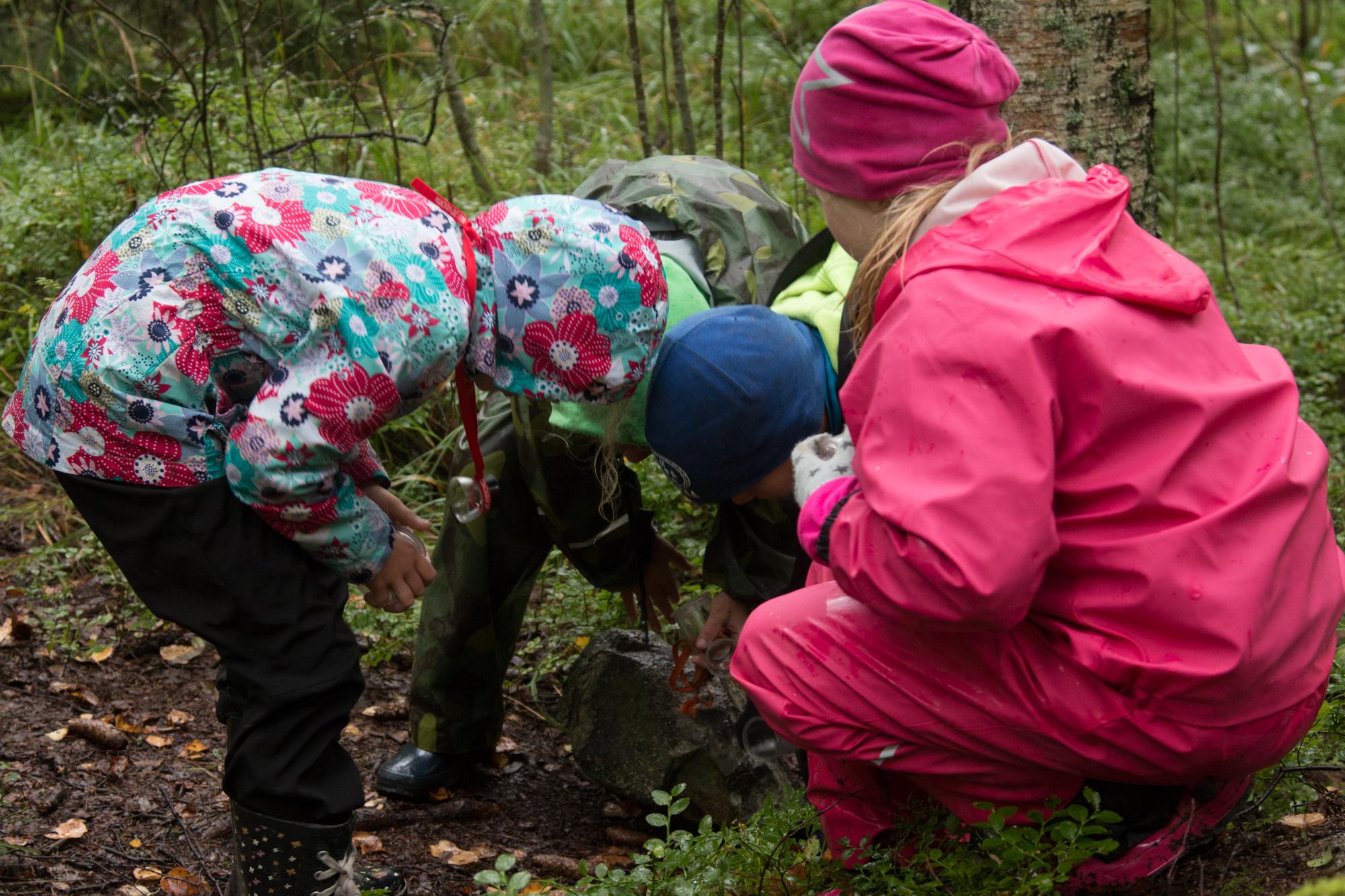 Tutkimus vahvistaa: Ulkona luonnossa saavutetaan parempia oppimistuloksia